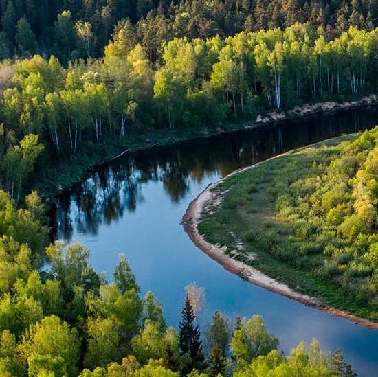 Un méandre de rivière au milieu d'une forêt